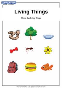 Sorting Living Things