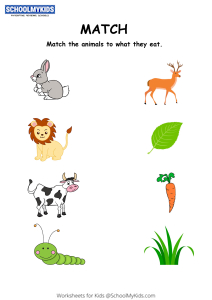 Animals and Their Food Matching Activity