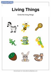 Identify Living Things