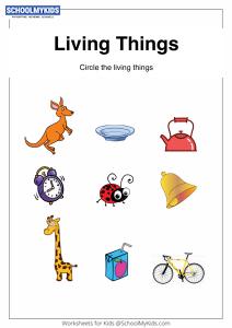 Identifying Things That Grow - Living Things