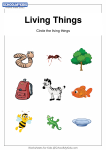 Classify Living Things