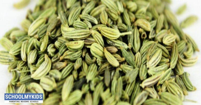सौंफ के फायदे और उपयोग: स्वाद भी सेहत भी – Saunf Ke Fayde