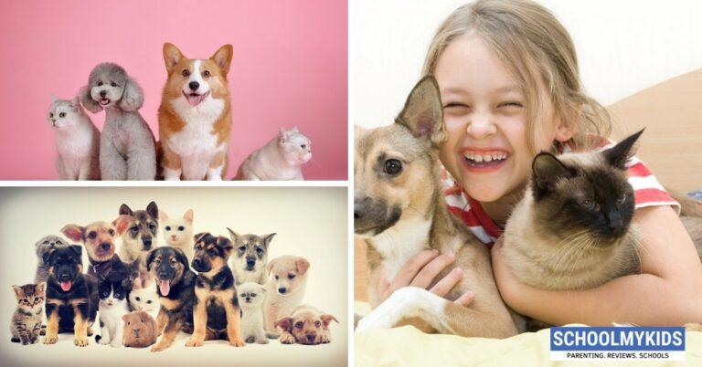 Benefits of Having Pets for Child Development