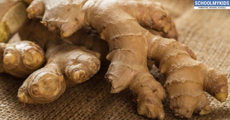 अदरक से सुधारें अपना स्वास्थ्य-Incredible Health Benefits of Ginger in Hindi